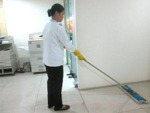 dịch vụ dieeetj côn trùng - công ty vệ sinh cleanhouse